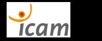 digitvc_icam